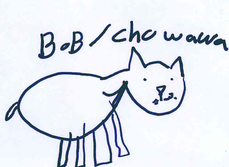 Bob the chihuahua